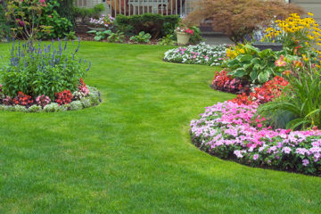 Lawn Garden Care